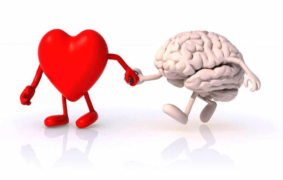 tuning-holografisk-kinesiologi-heart-brain-together